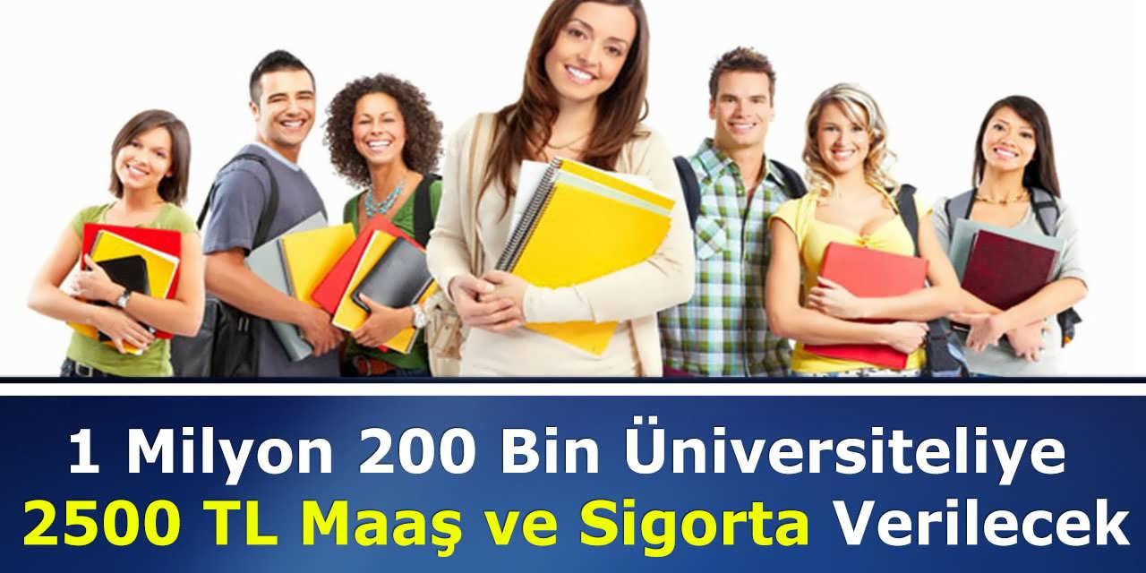 1 Milyon 200 Bin Üniversiteliye 2500 TL Maaş ve Sigorta Verilecek