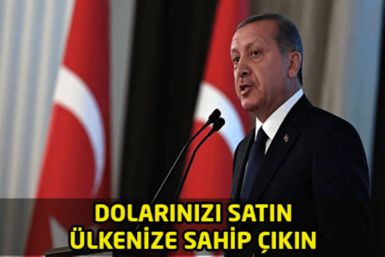 Cumhurbaşkanı Erdoğan Dolarınızı satın ve Ülkenize Sahip Çıkın