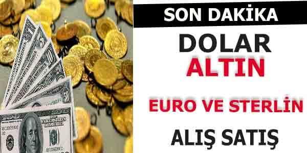 Dolar Euro ve Altının Son Durumu Ne Oldu