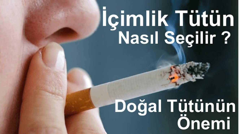 İçiminize Uygun Tütün Nasıl Seçilir