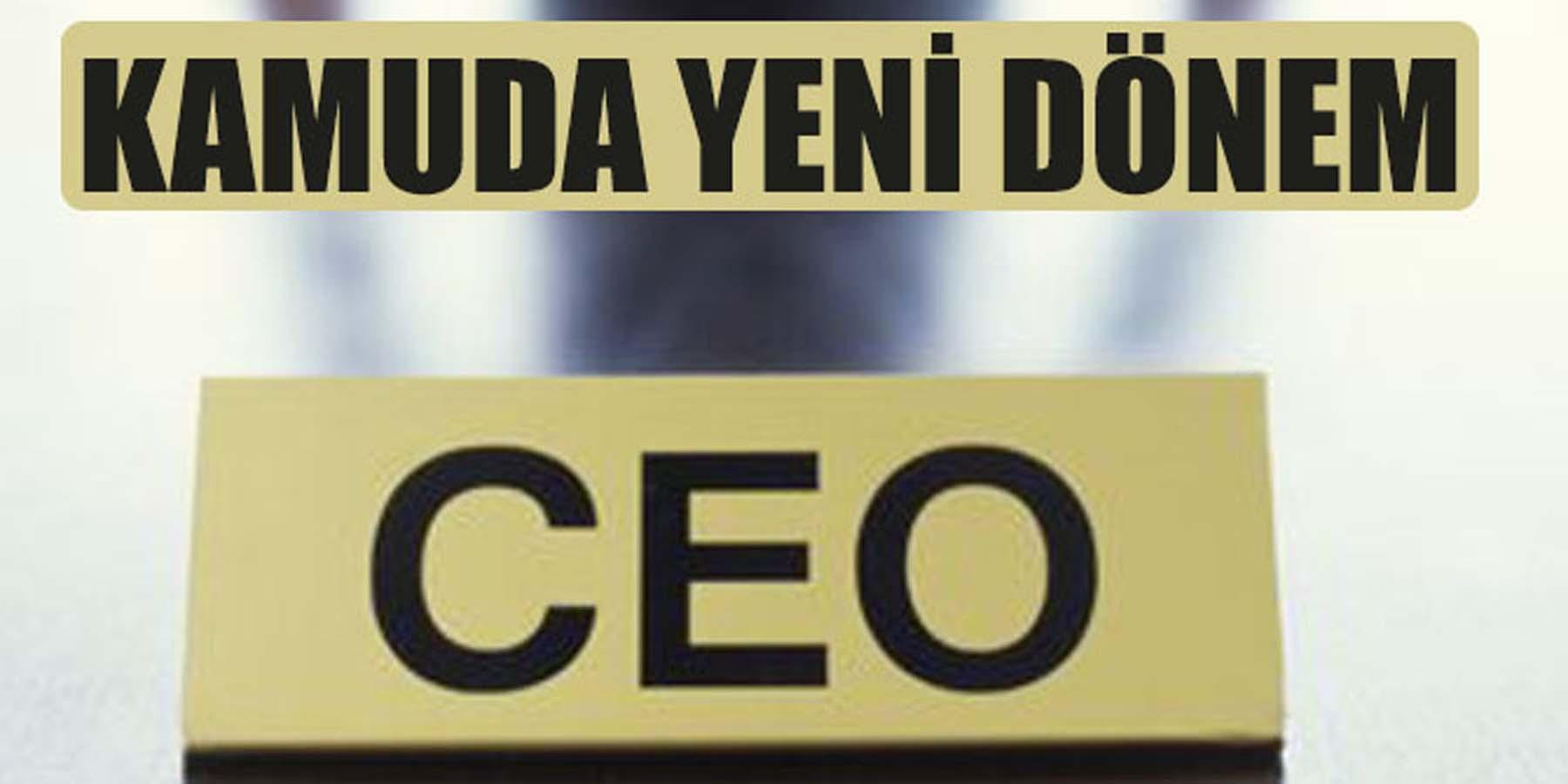 Kamu Kurumlarına CEO Atanacak