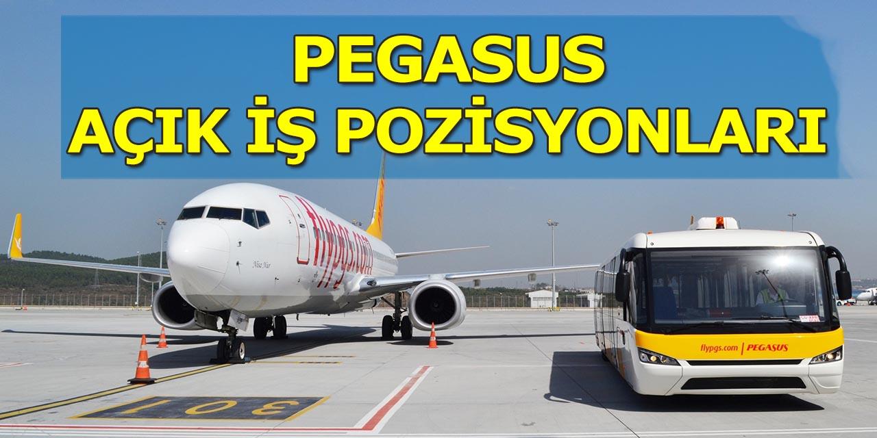 Pegasus İş İlanları Kariyer Açık İş Pozisyonları