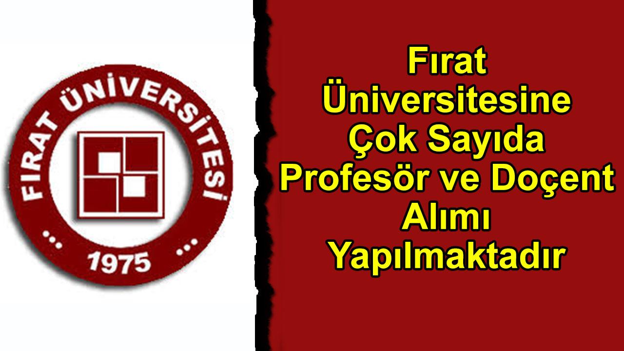 Fırat Üniversitesine Çok Sayıda Profesör ve Doçent Alımı Yapılmaktadır